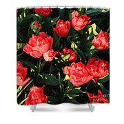 Ruffly Red Tulips Square Shower Curtain