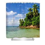 Rugged Lush Green Coastline Shower Curtain