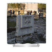 Ruins At The Roman Forum Shower Curtain