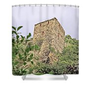 Ruins Of Durnstein Shower Curtain