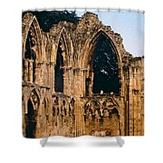 Ruins Of St. Mary's Abbey Shower Curtain