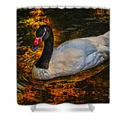 Ripples Of Beauty Shower Curtain