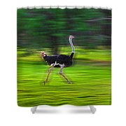 Run Ostrich Shower Curtain