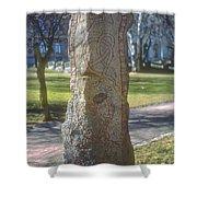 Runestone Shower Curtain