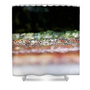 Rung Out Shower Curtain