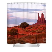 Running Cactus Shower Curtain