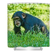 Running Chimp Shower Curtain