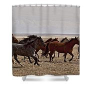 Running For The Fun Of It   #0958 Shower Curtain
