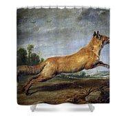 Running Fox Shower Curtain