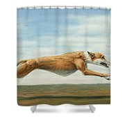 Running Free Shower Curtain by James W Johnson