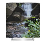 Running Water Shower Curtain
