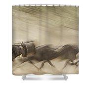 Running Wildebeest I Shower Curtain