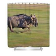 Running Wildebeest IIi Shower Curtain