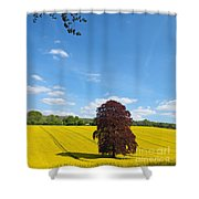 Rural Hampshire 2 Shower Curtain