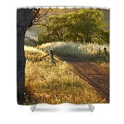 Rural Road 2am-009691 Shower Curtain