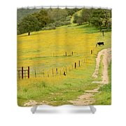 Rural Road Shower Curtain