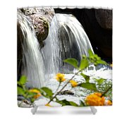 Rushing Along Shower Curtain