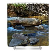 Rushing Mountain Stream Shower Curtain