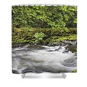 Rushing Water At Cedar Creek Washington State Shower Curtain