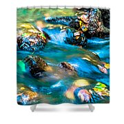 Rushing Water Over Fall Leaves Shower Curtain