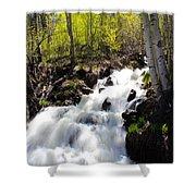Rushing Water Shower Curtain
