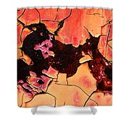 Rust And Paint - 519 Shower Curtain