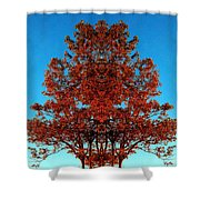 Rust And Sky 2 - Abstract Art Photo Shower Curtain