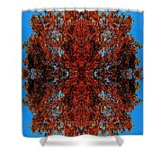 Rust And Sky 5 - Abstract Art Photo Shower Curtain
