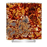 Rust-coloured Quartz Shower Curtain