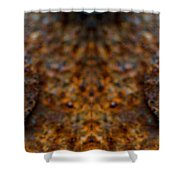 Rust Eyes 2 Shower Curtain