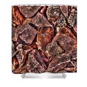 Rusted Bolt In The Rocks Shower Curtain