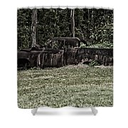 Rusted Truck Shower Curtain