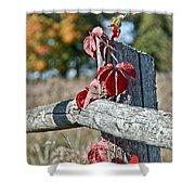 Rustic Autumn Shower Curtain