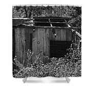 Rustic Shed 2 Shower Curtain
