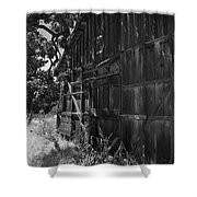 Rustic Shed 6 Shower Curtain