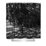 Rustic Shed 8 Shower Curtain