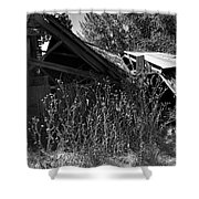 Rustic Shed 9 Shower Curtain