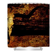 Rustic Steer Shower Curtain