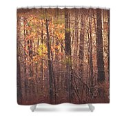 Rustic Winter Glow Shower Curtain
