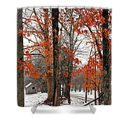 Rustic Winter Shower Curtain