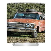 Rusty Impala Shower Curtain