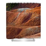 Rusty Land Shower Curtain