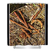 Rusty Nails Shower Curtain