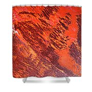 Rusty Textures Shower Curtain