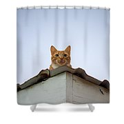 Rusty The Cat Shower Curtain