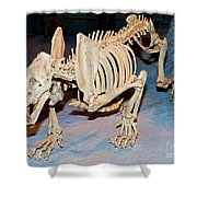 Saber-toothed Cat Shower Curtain