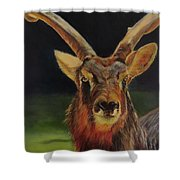 Sable Antelope Shower Curtain