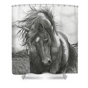 Sacred Stomping Grounds Shower Curtain