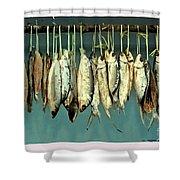 Sacrifice Of Milkfish  Shower Curtain