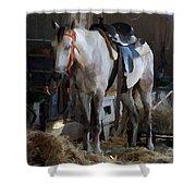 Sad Horse Shower Curtain